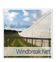 Windbreak-Net